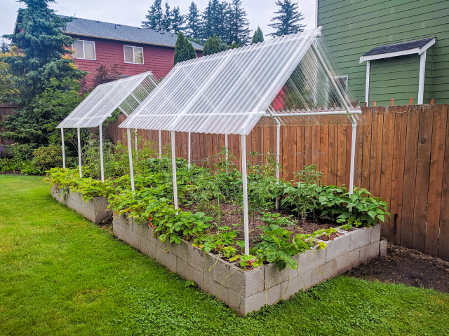 How to build cheap raised bed garden using cinder blocks